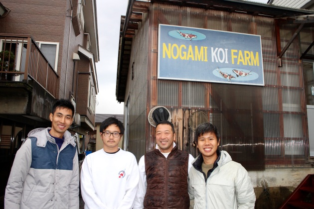 Very Friendly, Warm, Welcoming & Humble Nogami Father & Son Family @ Nogami Koi Farm